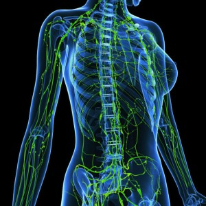 content_lymphatic-system__econet_ru