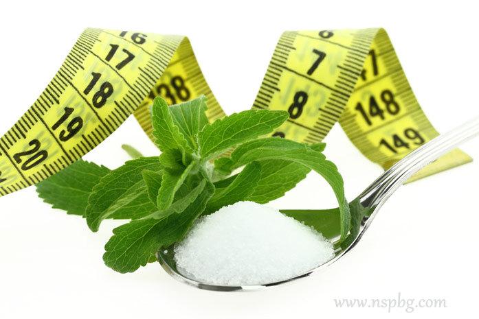Fresh Stevia Rebaudiana, sugar in a spoon and measuring tapewww.nspbg.com