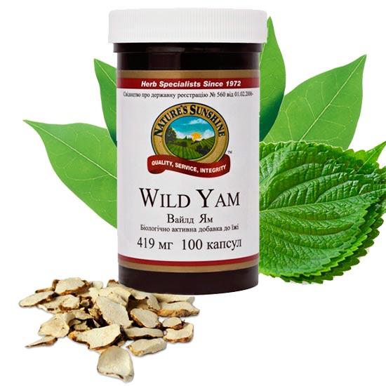 wild_yam